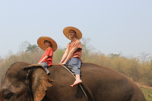 Riding Pachyderms in Chiang Mai, Thailand!
